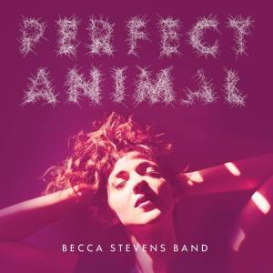 becca-stevens-band-perfect-animal