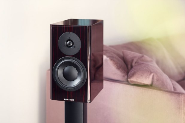 Dynaudio Special Forty 2020 09