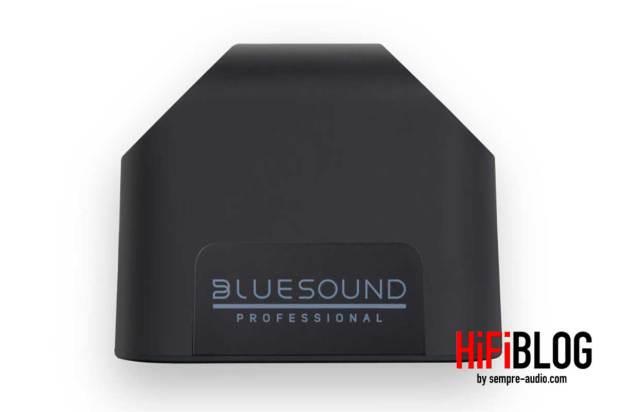 Bluesound Professional BSP200 Network Streaming Speaker 04