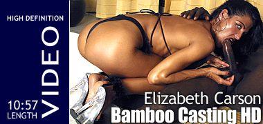 Elizabeth Carson Casting Bamboo HD