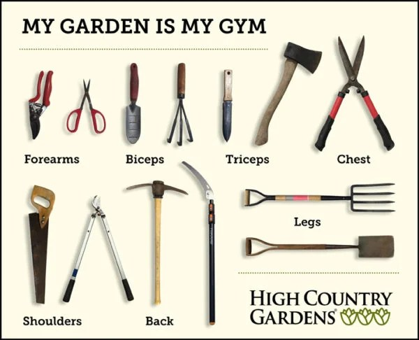 My garden is my gym. Garden tools that give you a workout.