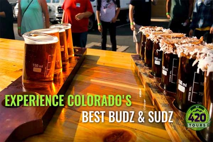 Buds and Beers: a Grow and Brewery Tours in Denver, colorado