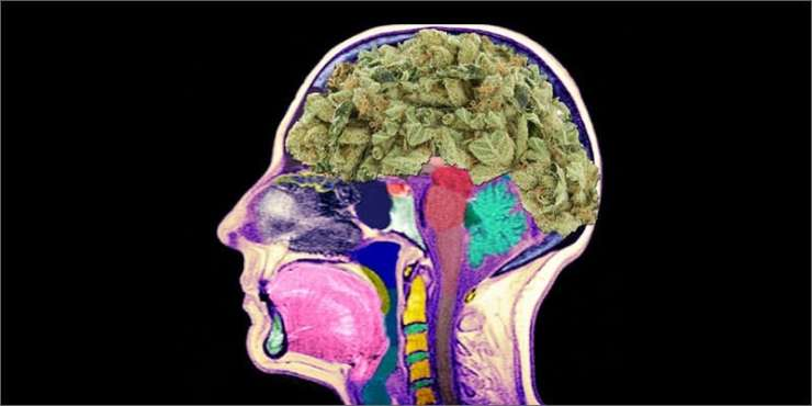 cannabis and music