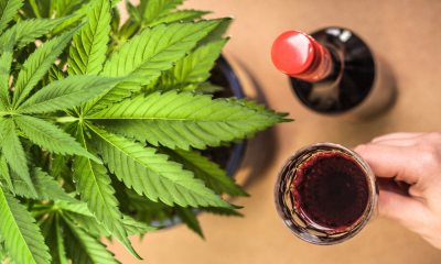 Cannabis Infused Wines are Hitting the Market