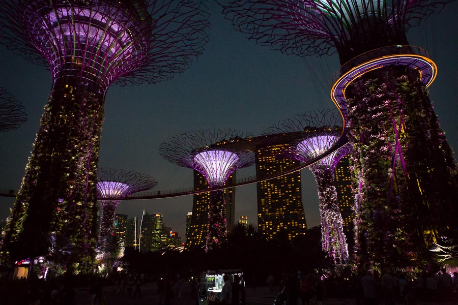singapore-gardens-by-the-bay-2