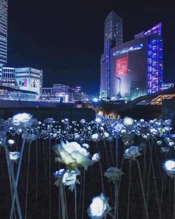 The DDP, Seoul