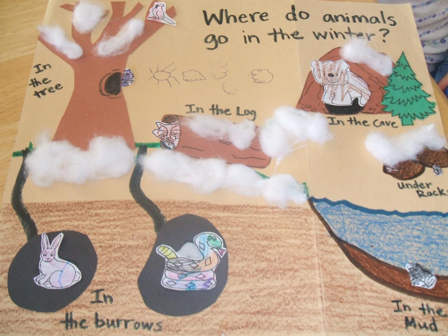 Apologia Zoology 3 Land Animals Extras