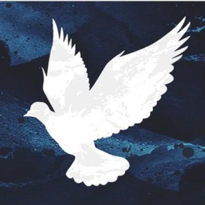 Hope Fund Dove