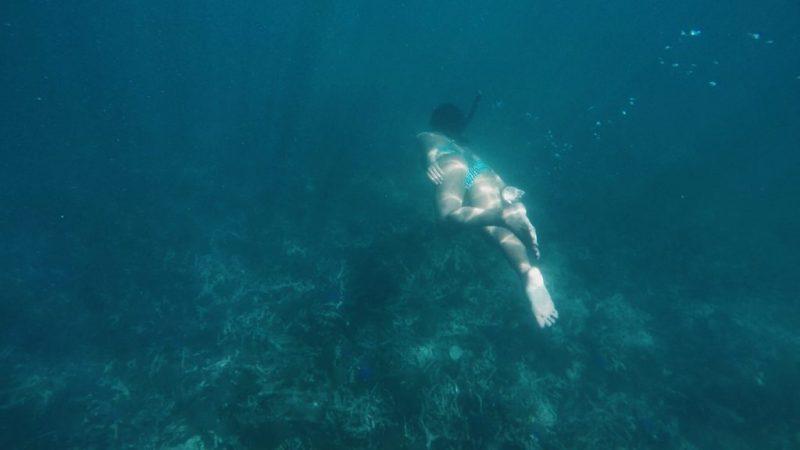 เกาะนาวโอพี