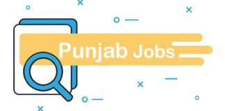 Official Punjab Govt Jobs