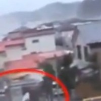 Unexplained Footage: The Mysterious Creature that escaped from the Japanese Tsunami...