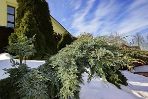 How to Protect Your Home From Extreme Winter Weather