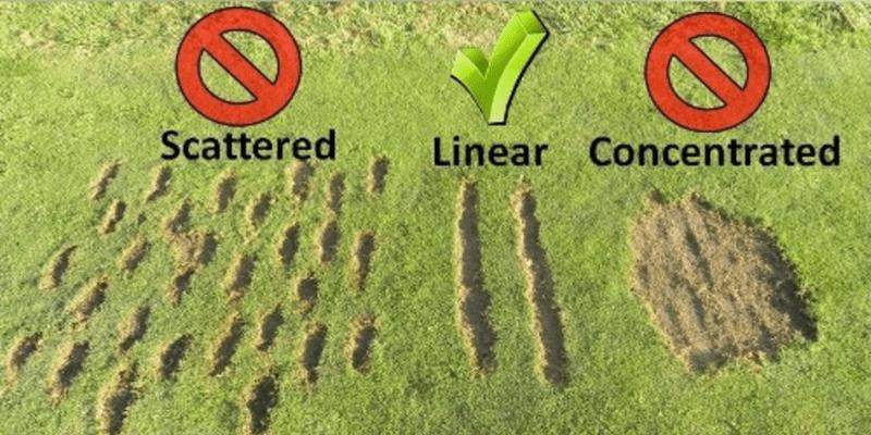 Driving range correct divots