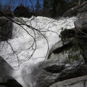 Beasore Creek 2017