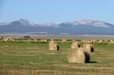 Land of 10,000 haystacks
