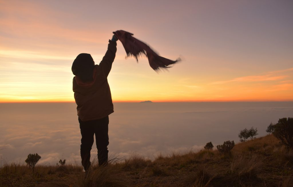 Travel Life- Freedom