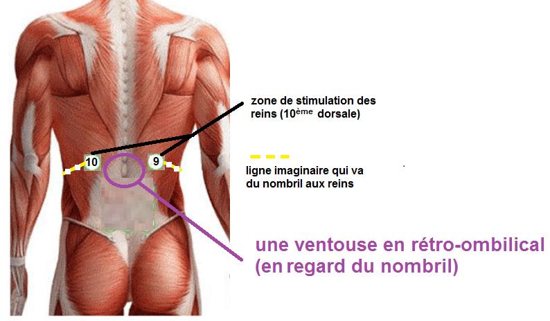 nombril