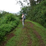 The Kuilau Ridge Trail is largely wide and gently sloped making for an easy hike
