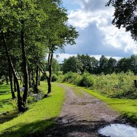 Meerdaagse hike Ardennen, België, vrijdag 4 oktober t/m zondag 6 oktober 2019