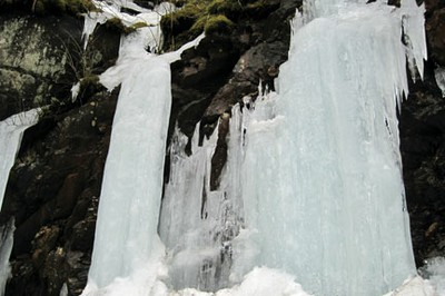 Icicles on Newfound Gap Rd. - 20100312