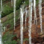 Icicles on Grotto Falls