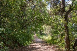 Briones Reservoir Roller Coaster Loop-East Bay | Hike Then Wine