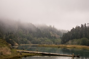 Big River, Big Views - Mendocino | Hike Then Wine