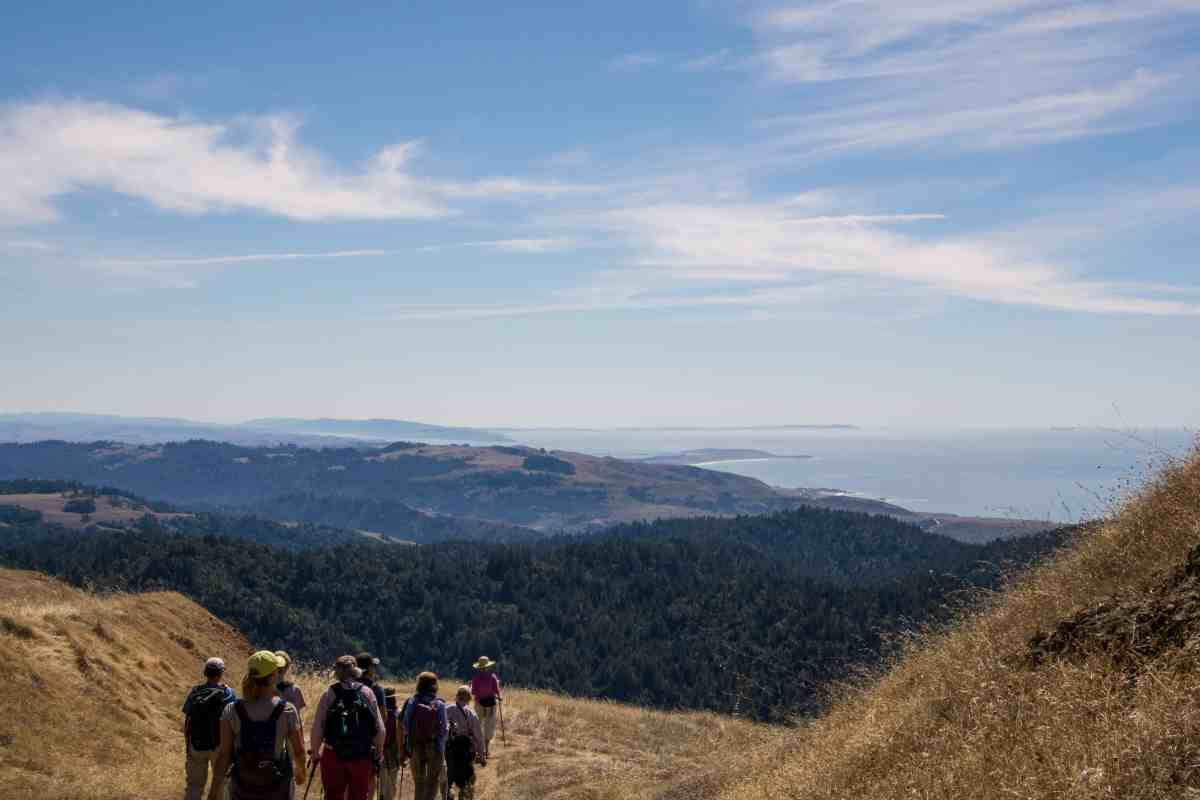 Pole Mountain Guided Hike - Sonoma Coast
