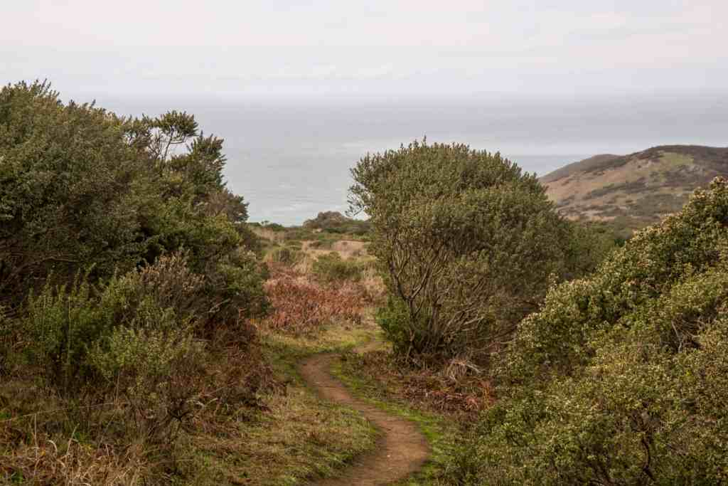 Where's the Pomo Canyon Waterfall? - Sonoma Coast | Hike then Wine