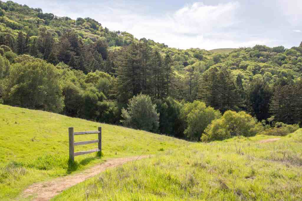 Jack London State Park to Sonoma Mountain Regional - Sonoma | Hike Then Wine