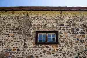 Earth Day Volunteer Day at Jack London SP - Sonoma County | Hike Then Wine