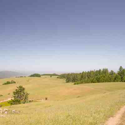 Bolinas Ridge – Marin