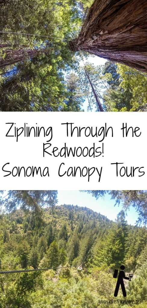 Ziplining Through the Redwoods! - Sonoma Canopy Tours | Hike Then Wine