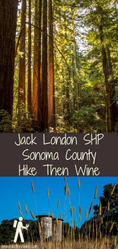 Sonoma Ridge Trail - Jack London SHP | Hike Then Wine