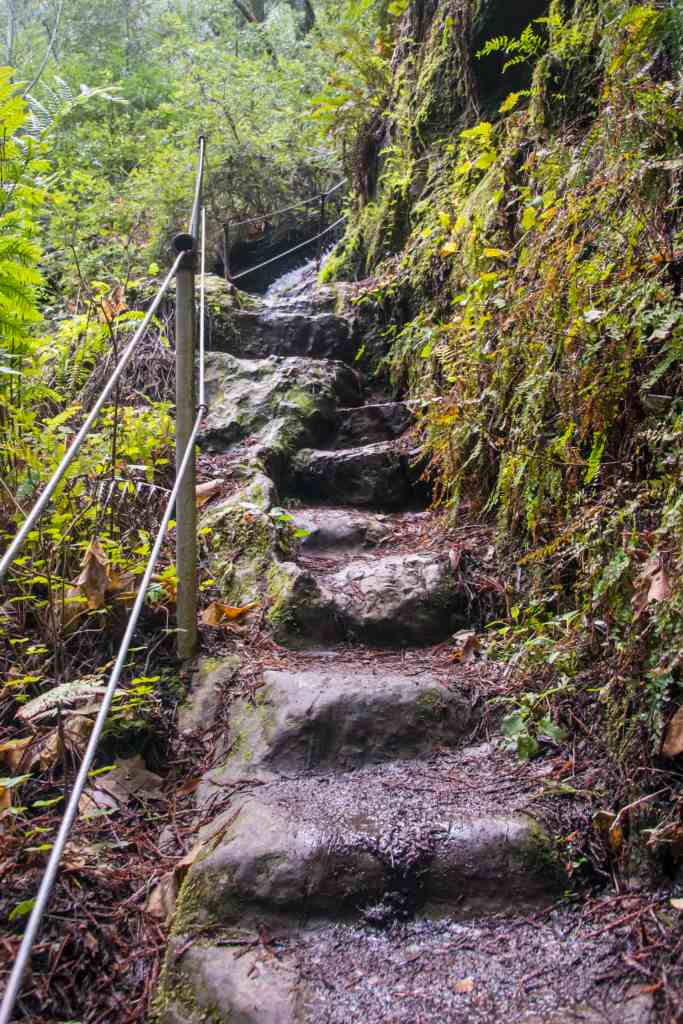 steps up to top of silver falls