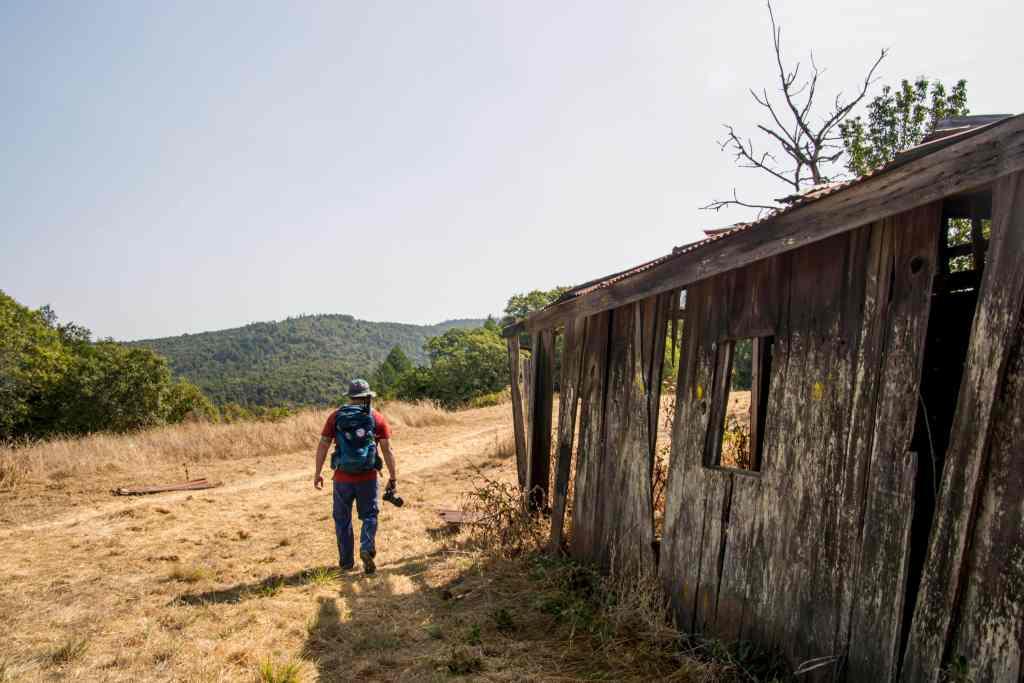 rob walking by the barn