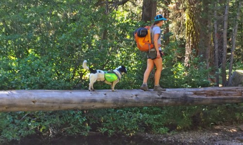 Spend a Night Under the Stars: Backpacking Desolation Wilderness