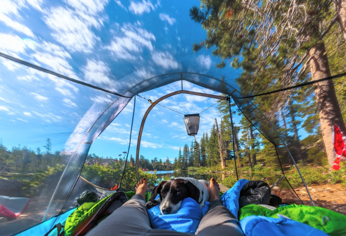 A see through Sierra Designs tent at the best lake tahoe campsite