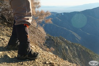 Hiking with Dogs: Mt. Baden-Powell