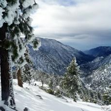 Trail & Snow Conditions: Register Ridge, January 9 2016