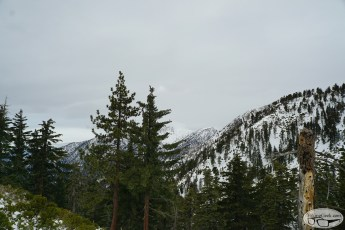 Icehouse Canyon to Icehouse Saddle & Bighorn Peak