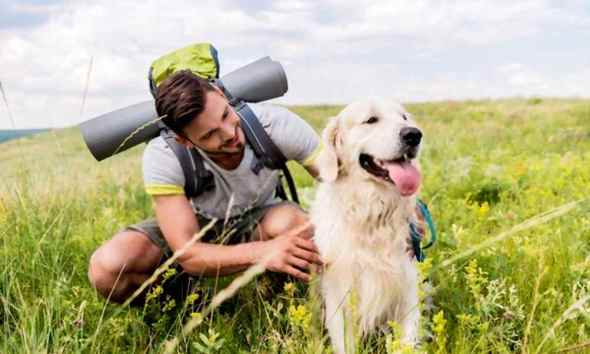 Dog hiking by hikingpirates
