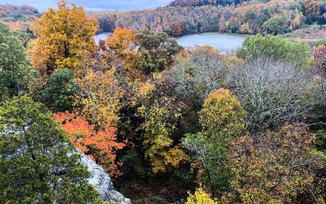 Hiking with Shawn's Trail Guide Series: Blackjack Oak Trail