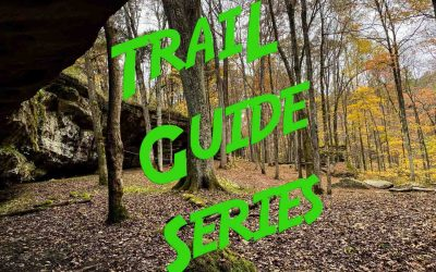 New Feature Announcement: Trail Guide Series!