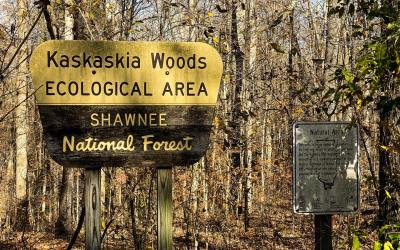 Hiking with Shawn's Trail Guide Series: Kaskaskia Experimental Forest