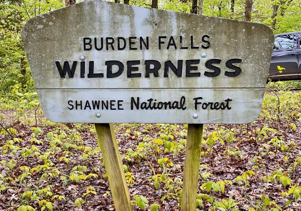 Shawnee National Forest Wilderness Areas: A Hiking with Shawn Wilderness Series
