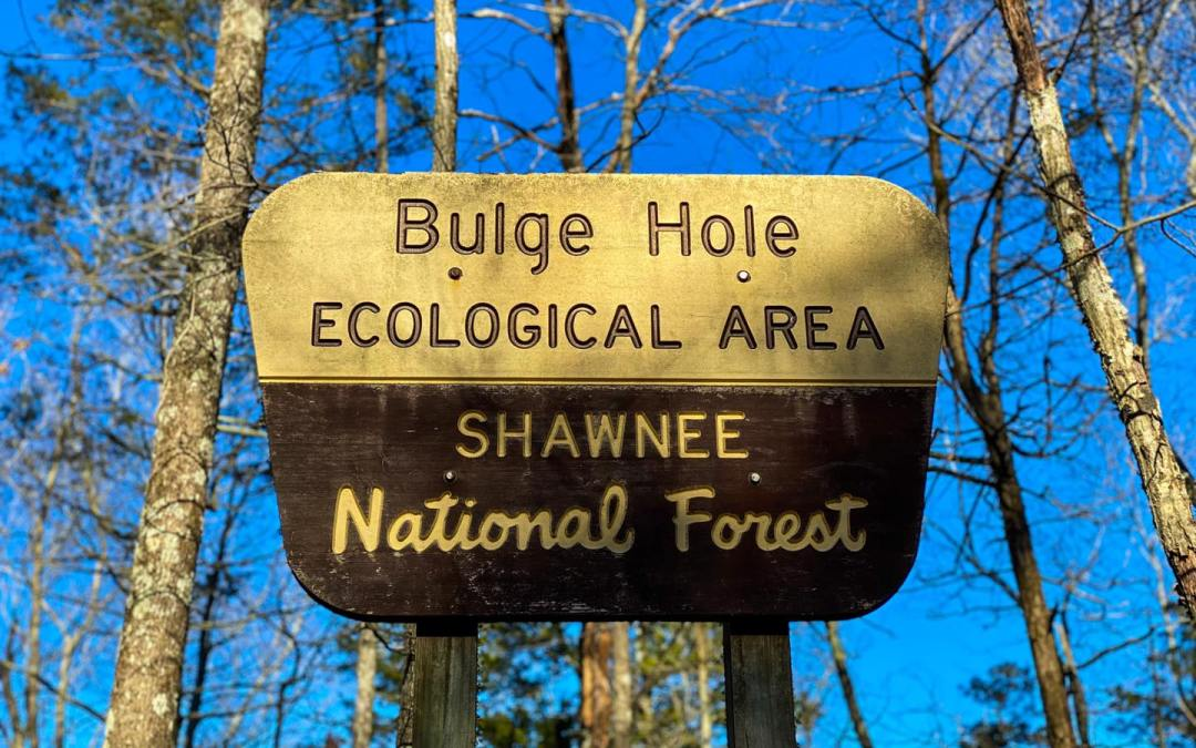Hiking with Shawn's Trail Guide Series: Bulge Hole Ecological Area