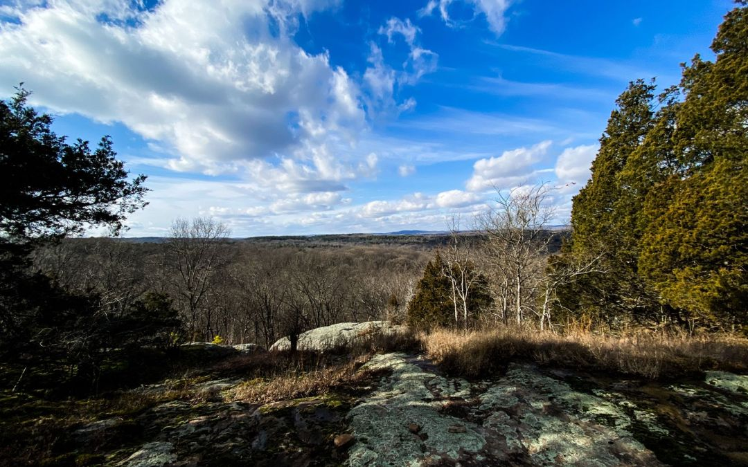 Hiking with Shawn's Trail Guide Series: High Knob Area