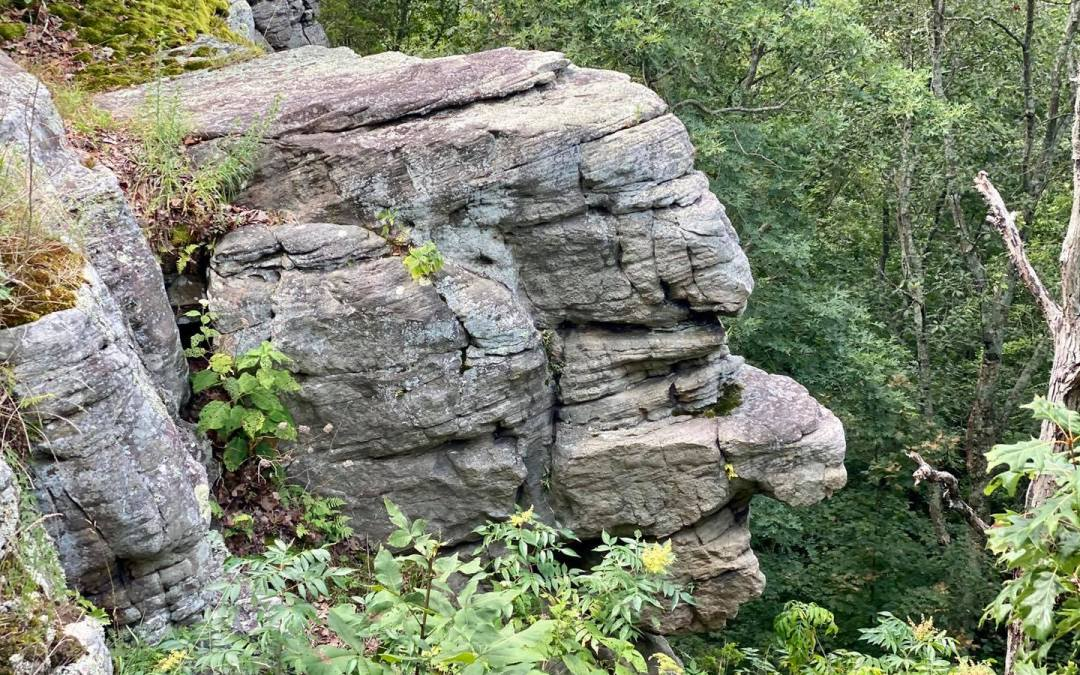 Hiking with Shawn's Trail Guide Series: Old Stoneface Trail