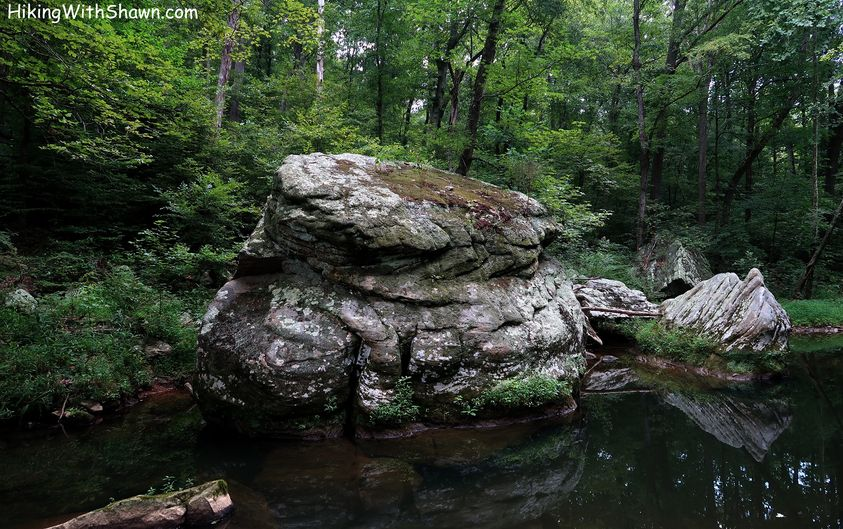Hiking with Shawn's Trail Guide Series: Max Creek Loop